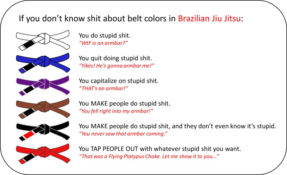 shit-about-bjj-colors