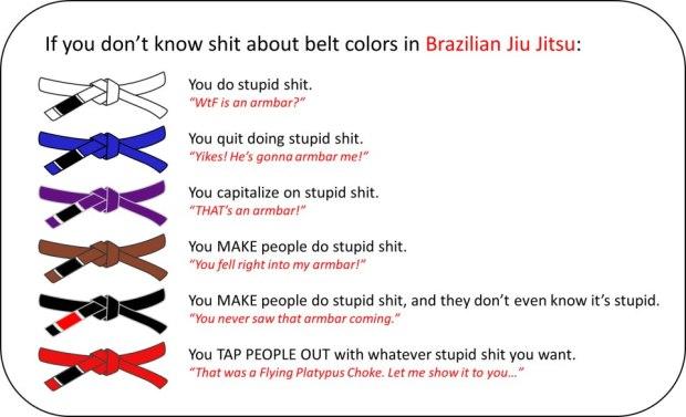 shit-about-bjj-colors