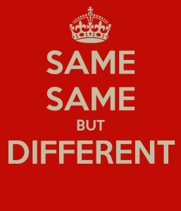 same-same-but-different--1